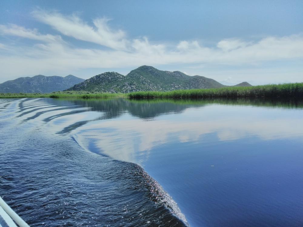 Skadar lake, central region of Montenegro
