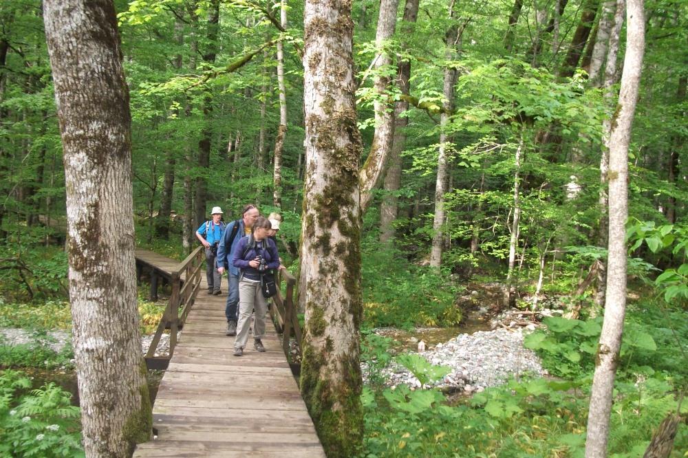 biogradska gora trekking