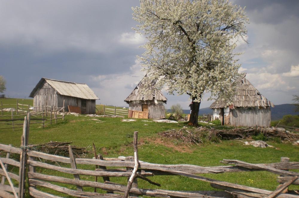 authentic life montenegro