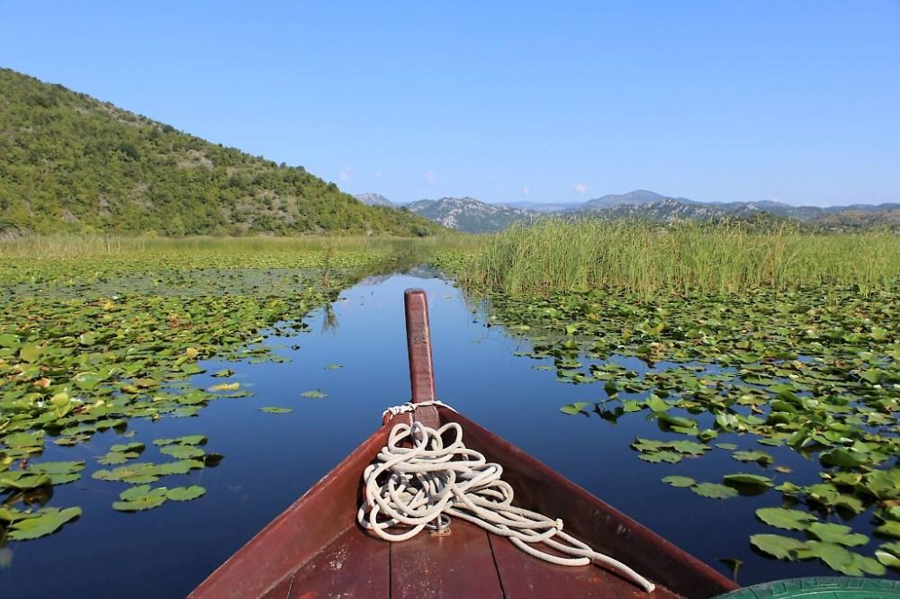 Skadarsko jezero - krstarenje